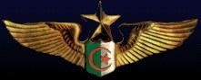 القوات الجوية الجزائرية المعرفة