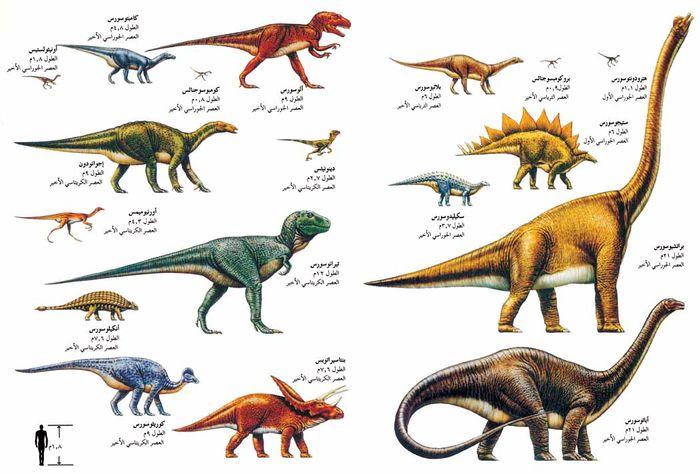 ديناصور المعرفة