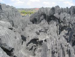 Tsingy de Bemaraha Strict Nature Reserve.jpg