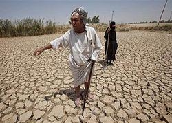 التصحر في الجزائر1.jpg
