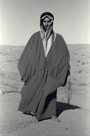 زايد بن سلطان آل نهيان المعرفة