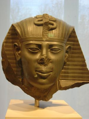 A fragmentary statue head of Amasis II