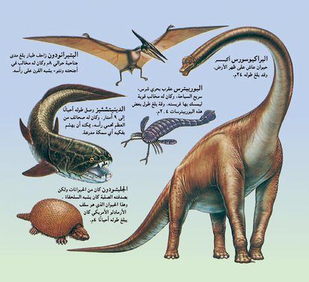 حيوان ما قبل التاريخ المعرفة