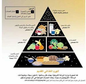 الهرم الغذائي الرابع د سمى نصار 14